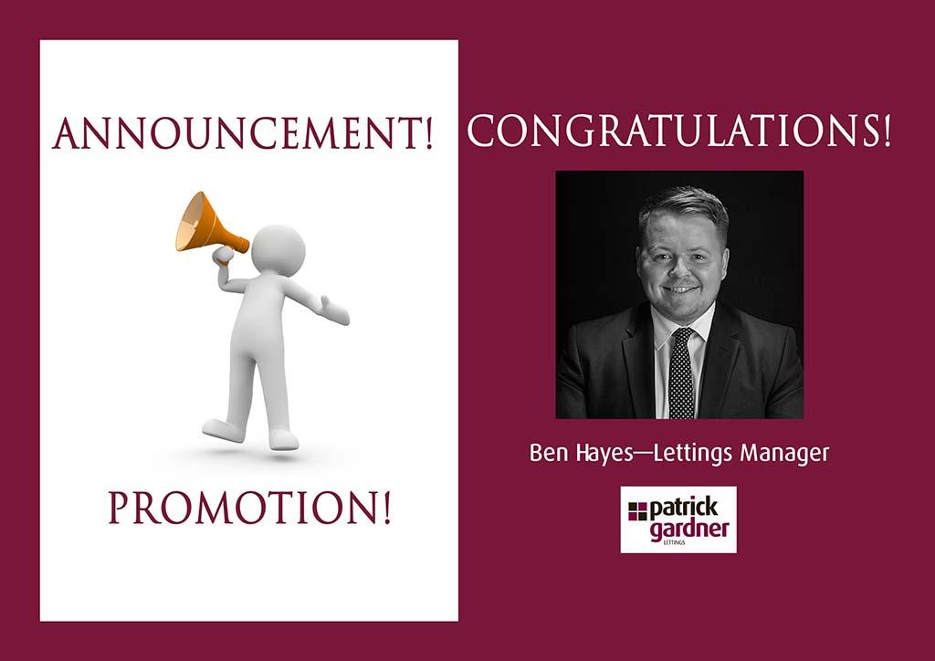 Ben Hayes Promotion
